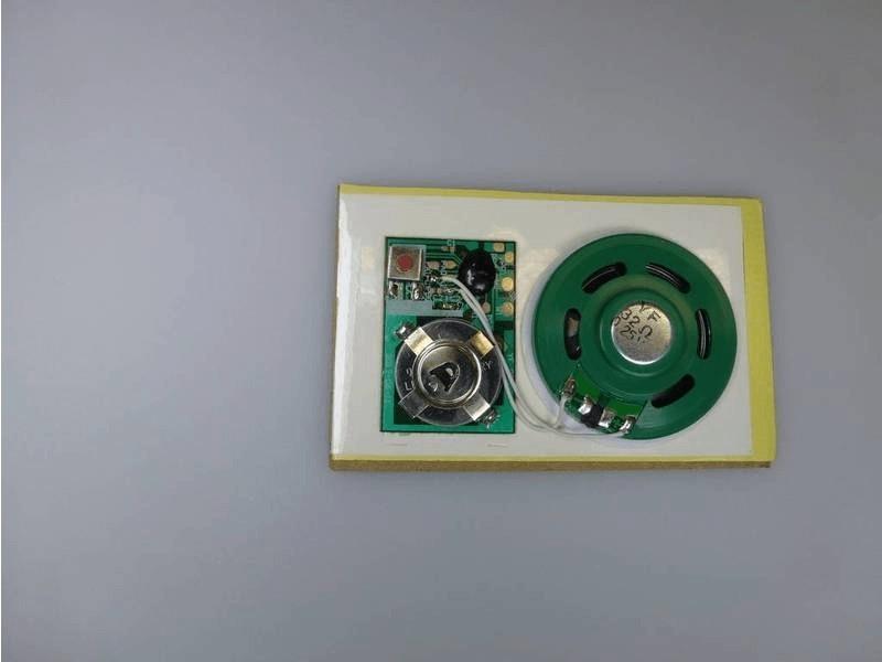 Module sonore avec bouton-poussoir