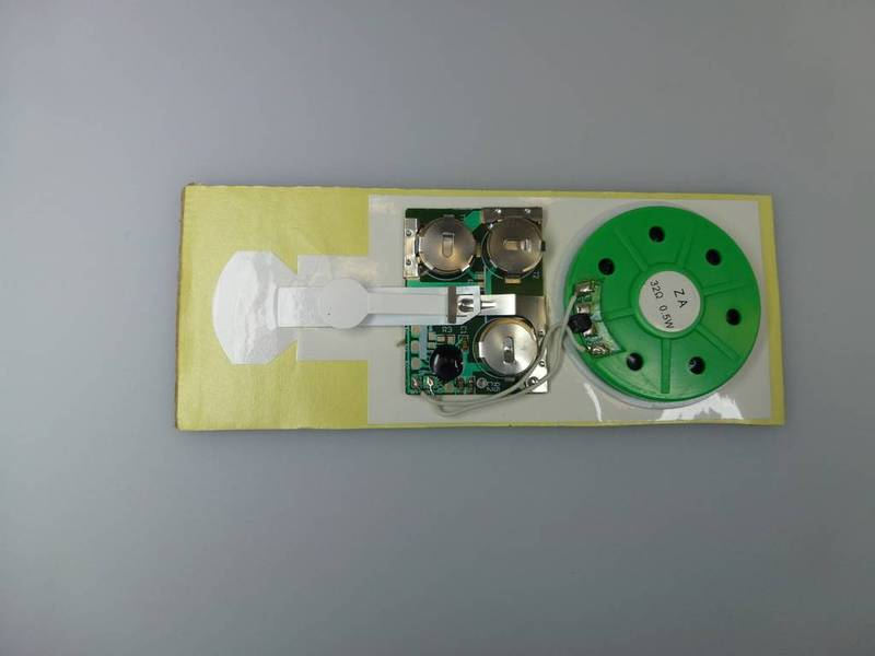 Sound Module with Slide Tongue Switch for Greeting Cards